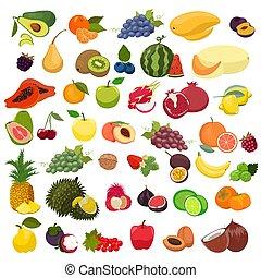 fondo., aislado, conjunto, graphics., blanco, fruits, vector