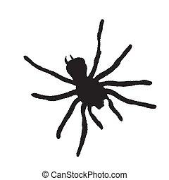 fondo., araña, ilustración, silueta, blanco, vector