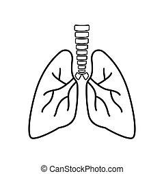 fondo., blanco, humano, vector, respiratorio, interno, system., pulmones, organ., icono, señal