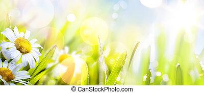 Fondo de flor de primavera abstracto y soleado