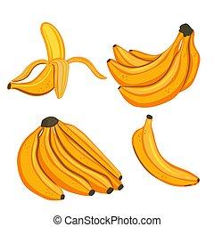 fondo., vector, graphics., conjunto, plátanos, blanco, aislado