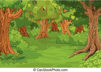 Forest Glade