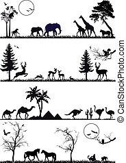Formación animal establecida, vector