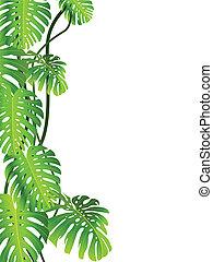 Formación de planta tropical