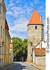 Fortaleza en la vieja ciudad de Tallinn