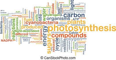 Fotosíntesis concepto de fondo
