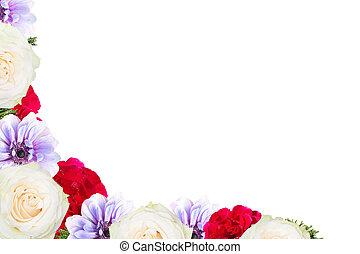 Frame de flor aislada en fondo blanco