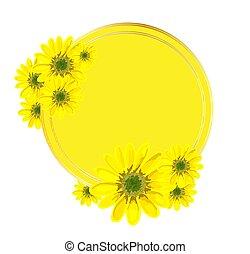 frame.., primavera, amarillo, o, blanco, redondo, ilustración, diseño, sales., publicidad, promociones, fondo., flowers., patrón, plano de fondo, aislado, inscription.