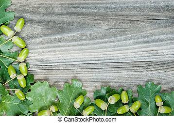 Frontera de hojas de roble y bellotas verdes