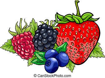 fruits, caricatura, ilustración, baya