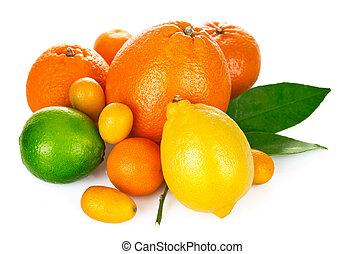 fruta cítrica, verde, fruta, hoja, fresco