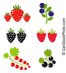 Frutas de bayas