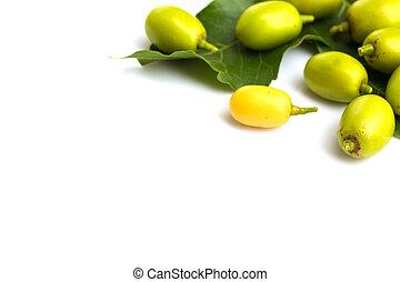 Frutas medicinales neem con ramitas sobre fondo blanco