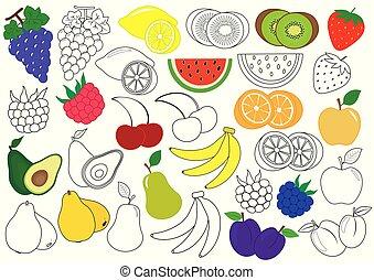 Frutas y bayas. Libro de color. Juego educativo para niños. Ilustración de vectores.