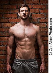 fuerza, masculinity., posar, contra, muscular, ladrillo, joven, pared, hombre, guapo, posición, mientras