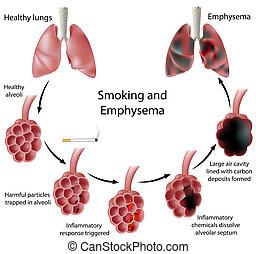 Fumar y enfisema, eps8