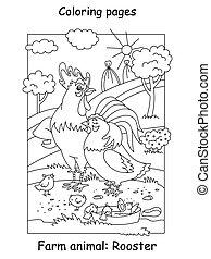 gallo, colorido, vector