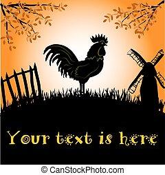 Gallo o gallo en el fondo del sol de la mañana