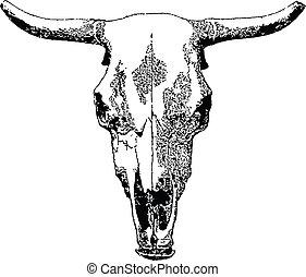 ganado, skull.