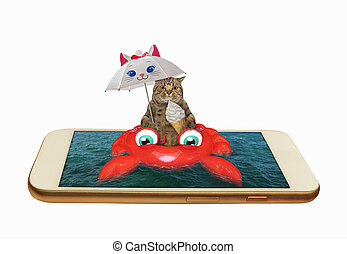 gato, cangrejo, 2, inflable, teléfono