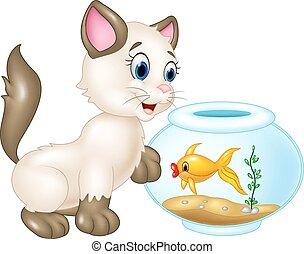 gato, curioso, natación, juego