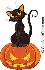 Gato de Halloween en calabaza