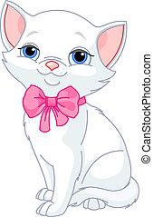 gato, muy, lindo, blanco