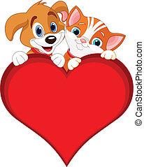 gato, valentine, señal, perro