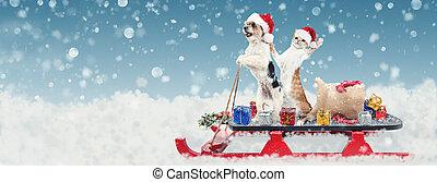 Gato y perro en Navidad Santa trineo
