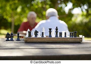 Gente activa retirada, dos viejos amigos jugando ajedrez en el parque