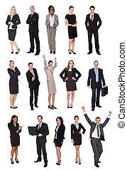 Gente de negocios, gerentes, ejecutivos