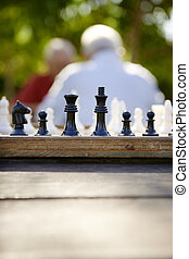 Gente jubilada activa, dos viejos amigos jugando ajedrez en el parque