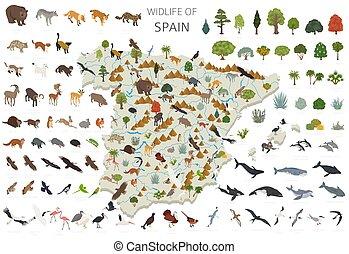 geografía, su, constructor, diseño, aislado, plantas, animales, españa, 3d, set., construya, aves, elementos, poseer, infographics, isométrico, colección, wildlife., blanco