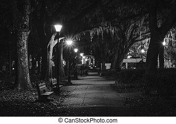 georgia., forsyth, árboles, noche, parque, por, sabana, bancos, musgo, español, sendero