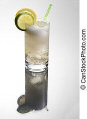 Gin o vodka tonic