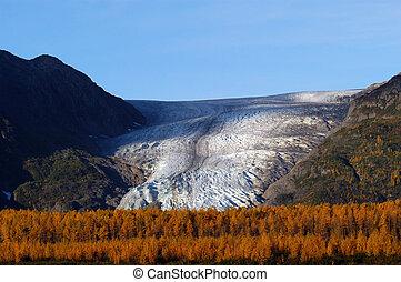 glaciar, otoño, seward, salida, alaska