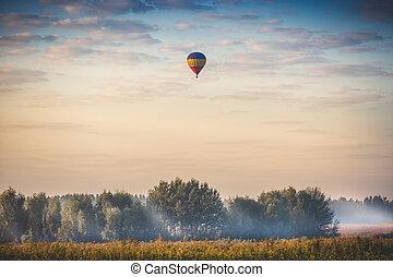Globo de aire caliente volando sobre el bosque a primera hora de la mañana