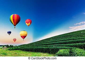 Globos aerostáticos volando sobre el paisaje de la plantación de té al atardecer.
