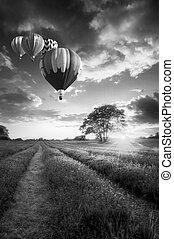 Globos de aire caliente volando sobre el paisaje de lavanda puesta de sol en blanco y negro