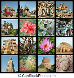Go India collage - fondo con fotos de viajes de monumentos indios