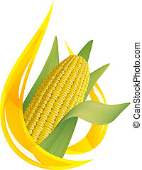 gota, maíz, oil., aceite, cob., estilizado
