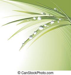 Gotas de agua en hojas verdes