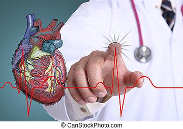 gráfico, corazón, doctor, tacto, golpe