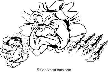 Gran avance de la Garra Bulldog