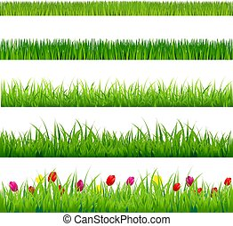 Gran césped verde y flores