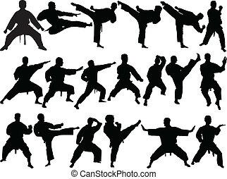 Gran colección de karate