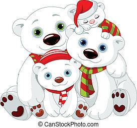 Gran familia de osos polares en Navidad