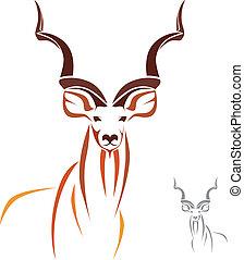 Gran kudu