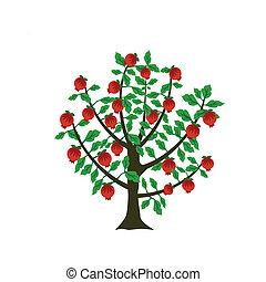 granada, árbol