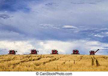 Grandes combinaciones rojas equipo de agricultura